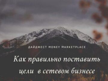 celi-v-setevom-biznese